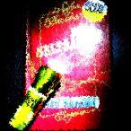 Taschenlampe (4)